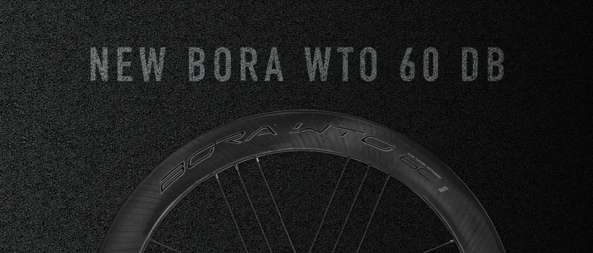 Bora WTO 60 Disc Brake